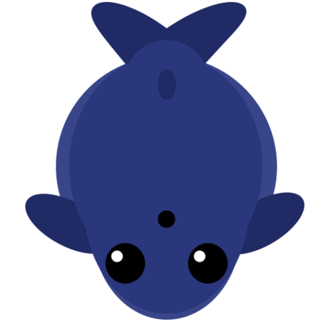 File:Bluewhale.png