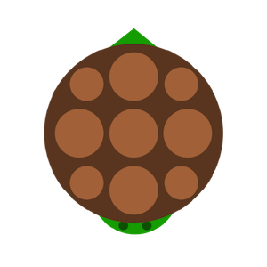 File:Turtle2.png