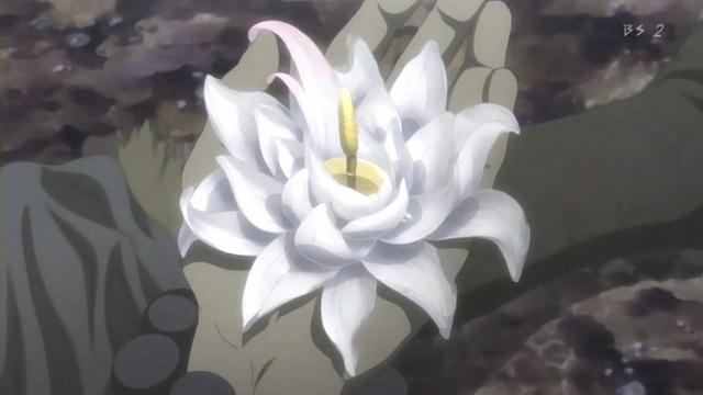 File:Sig salua flower.png