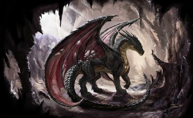 File:Black Dragon.jpg