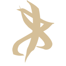 File:VF Rune, Vision.png