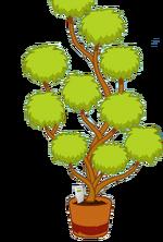 Friends Tree Transparent