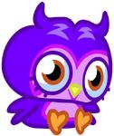 Purplex3