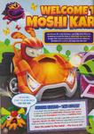 100% Moshi Karts p4