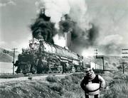 Shrek's Liger Train