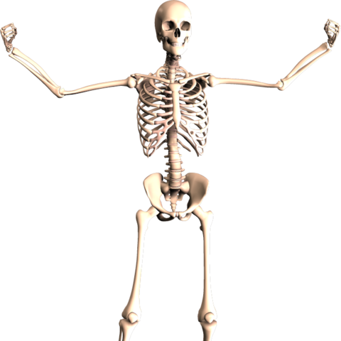 The Skele-Man that appeared in issue 360.