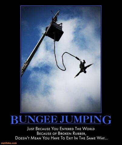 File:Bungee-jumping-bungee-jump-world-broken-rubber-demotivational-posters-1332151035.jpg