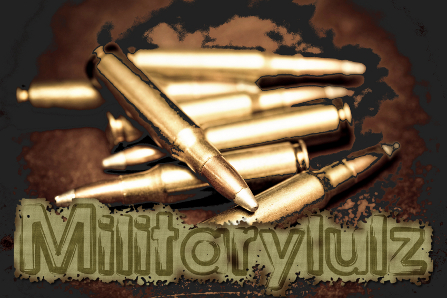 Logo - Military Lulz