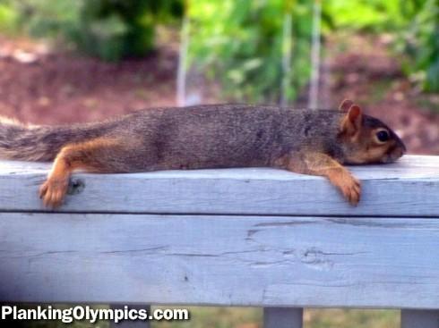 File:-planking-1330647283.jpg