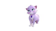 Cat Sofia