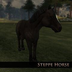 Steppe Horse 1