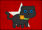 Dot the Cat
