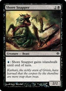 Shore Snapper ALA