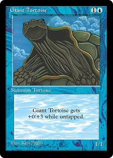 File:Giant Tortoise MED.jpg