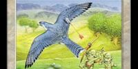 Freewind Falcon