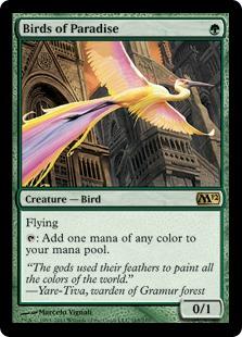 Birds of Paradise M12