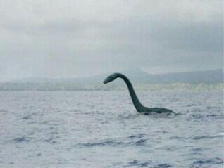 Wazel Sea Monster
