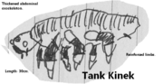Tank Kinek by Holbenilord