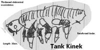 Tank Kinek