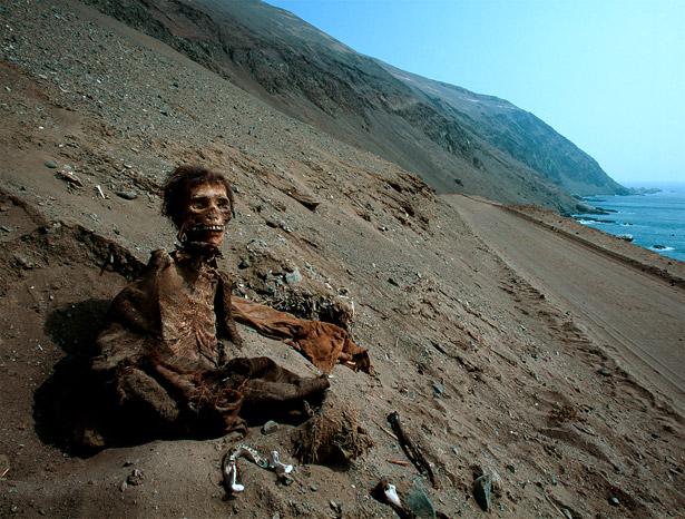 File:Chinchorro-mummy-615.jpg