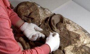 4500 year old Peruvian mummy