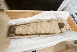 Ancient-egyptian-mummy-1