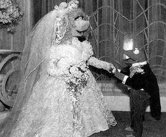 Kermit and piggy poser wedding
