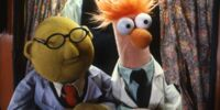 Bunsen and Beaker's relationship