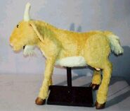 Goat.DePaola