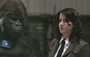 Middleman-gorilla
