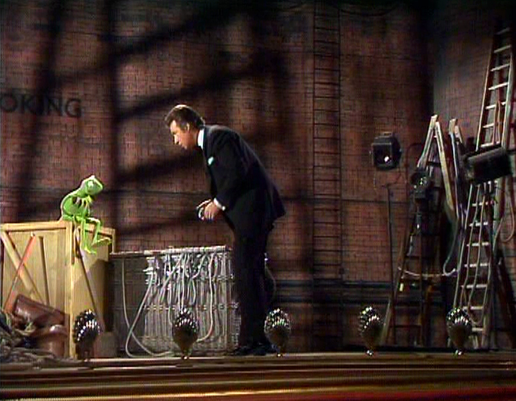 File:Kermit suffers from rheumatism.JPG