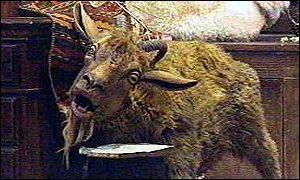 File:Dolittle goat.jpg