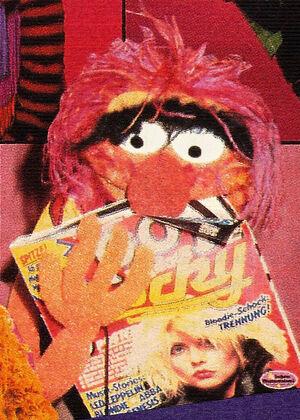 Pop-Rocky-AnimalMunchingTheMag(1980)