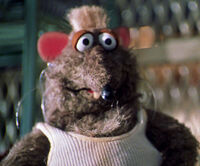 Bubba the rat