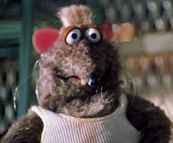 File:Bubba the rat.jpg