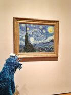 Moma starry night