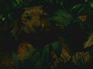 File:Darjeeling-tiger.jpg
