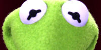 Kermit the Frog's eyes