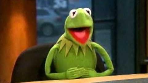 Kermit on CP24 Breakfast