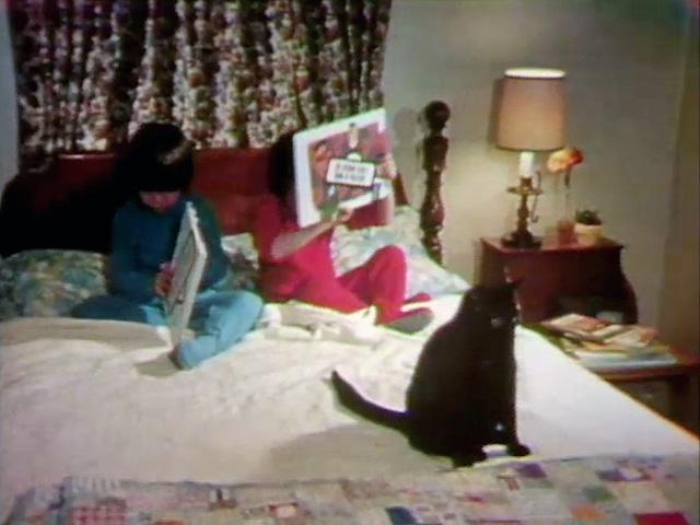 File:N words and Sesame books.jpg