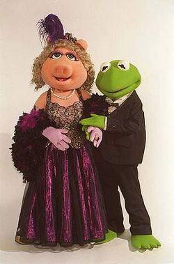 Kermit Piggy Costumess