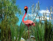 Ewsleep-flamingo