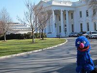 Grover whitehouse