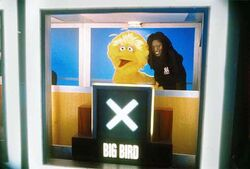 Whoopi-BigBird-HollywoodSquares