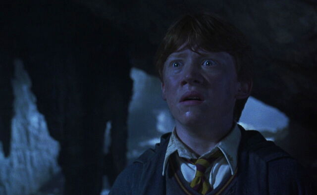 File:Chamber secrets ron.jpg