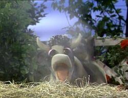 Cow.Sneezesong