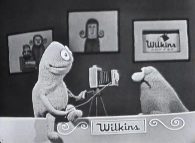 File:Wilkins-Camera.jpg