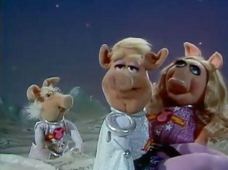 File:Koozebane Pigs.jpg