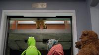 TheMuppets-S01E07-Elevator-PiggyLegs