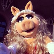 Instagram piggy hair